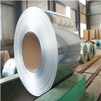 Hot DIP Galv Cold Rolled Steel Coil for Krazi Door