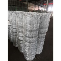 Hot Dipped Galvanized Hinge Joint Knot Field Fence for Cattle Fence