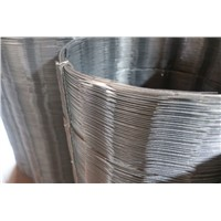 Low Price Galvanized Concertina Razor Barbed Wire for Sale