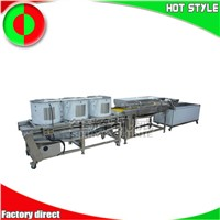 Passion Fruit Blueberry Vegetable Production Line