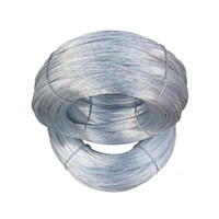 Hot Dipped Galvanized Steel Wire 1.0mm 3.0mm Electro Galvanized Iron Wire