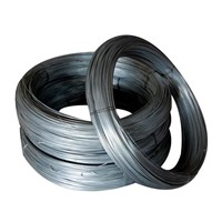 Galvanized Binding Wire 1kg Per Roll with 10kg Per Bundle for Fence