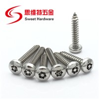 Stainless Steel A2 A4 Pan Head Torx Self Tapping Screw