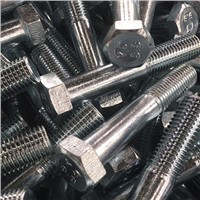 Supply High Quality Bolt & Nut with Best Price