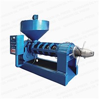 YZYX168 Is the Biggest Model for Single Screw Oil Mill Equipment