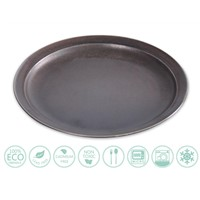 Globe Faith Eco-Friendly Stoneware Dinner Plates,