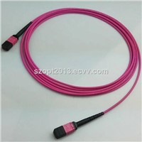Fiber Optic Patchcord MPO-MPO MTP-MTP OM4 12 24 Cores
