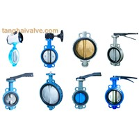 Wafer Type Butterfly Valve (TH-BTV-AW)