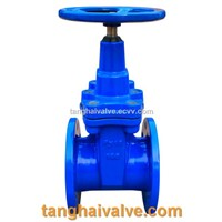 Replaceable Liner Gate Valve (TH-GTV)