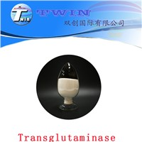 Food Grade Enzyme Transglutaminase