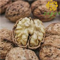 China Lowest Price Yunnan Walnut Inshell