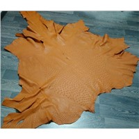 Tanned Ostrich Skin Leather for Sale