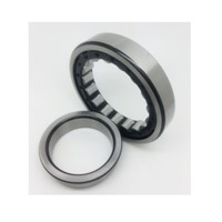 Electric Tools NJ411M / C4 Cylindrical Roller Bearings
