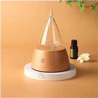 Waterless Essential Oil Aroma Diffuser Nebulzier