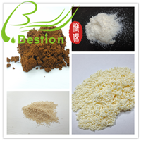 Lipase Immobilization Adsorbent Resin