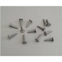 Flat Head Clout Nails, Felt Nails, Flat Large Head Roofing Nails or