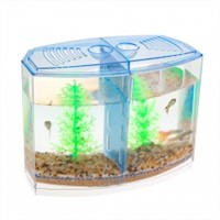 Best Betta Fish Tank Make Partial Water Changes Quick