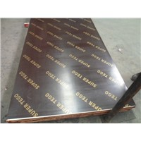Brown/Black Film Faced Plywood for Shuttering