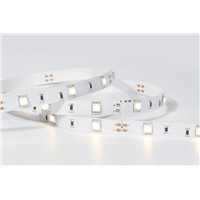 SMD 5050 30LED/M Led Strip Light