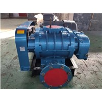 Solid & Durable Roots Blower for Pneumatic Conveying of Sewage Treatment