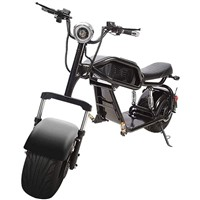 Adult Electric Scooter Motorcycle, 1000W Offroad Retro Electric Bike