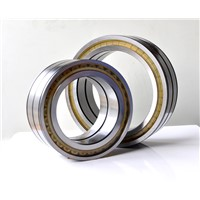 Full Complement Cylindrical Roller Bearing SL04 SL18 SL1850 Series