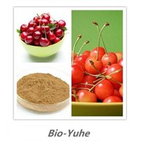 100% Natural Acerola Extract, 17% -25%Vitamin C