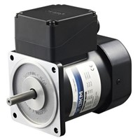 DKM Reversible Induction AC Motor, 4 Pole
