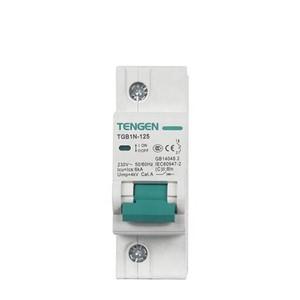 ECVV Miniature Circuit Breaker TGB1N-125 1P TGB1N-1251P-C-80A 6KA TENGEN MCB